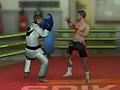Игра Тренировка MMA бокс