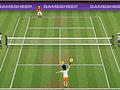 Игра Чемпионы большого тенниса
